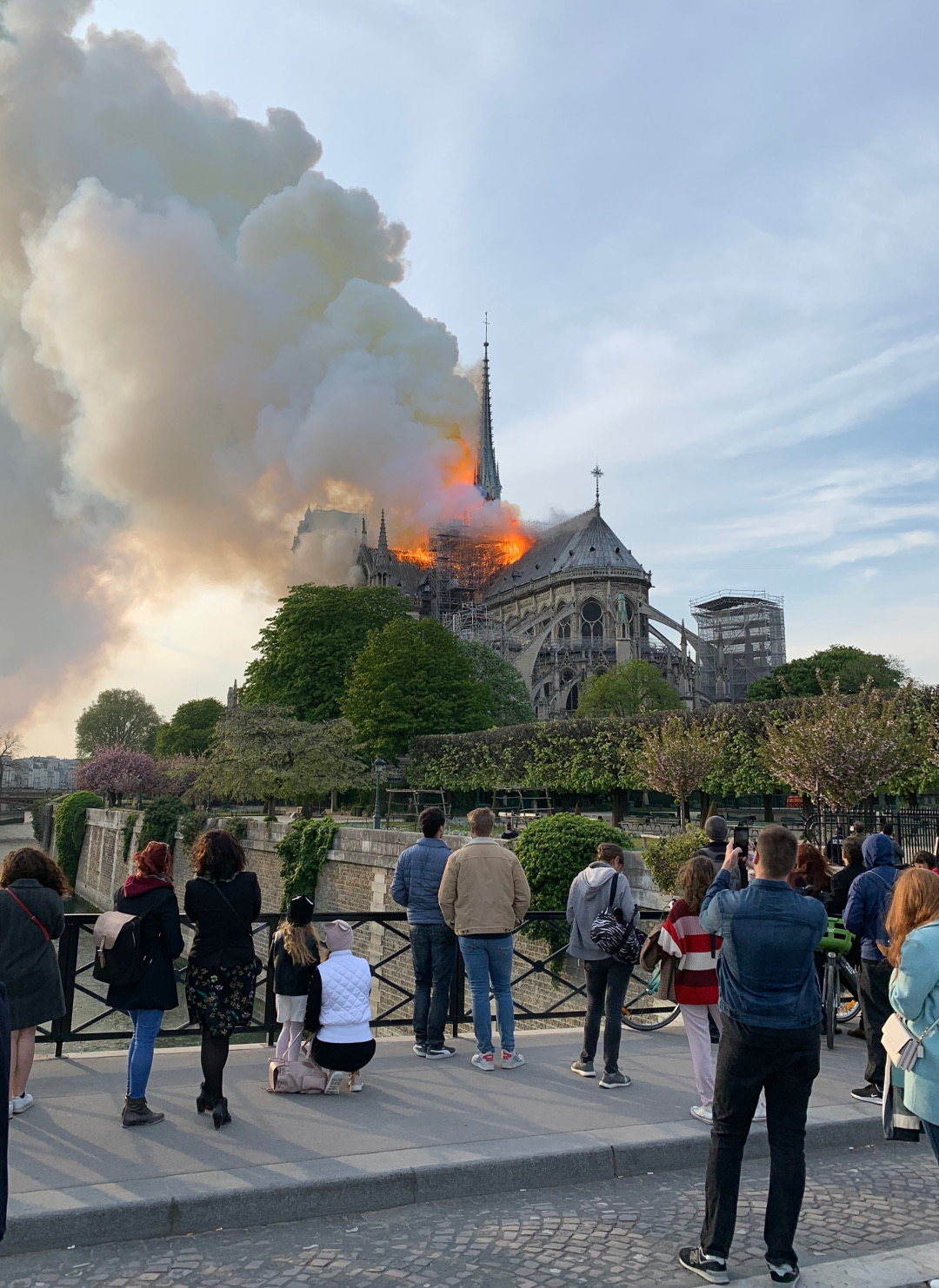 The Notre Dame fire. Photographs by William Hall