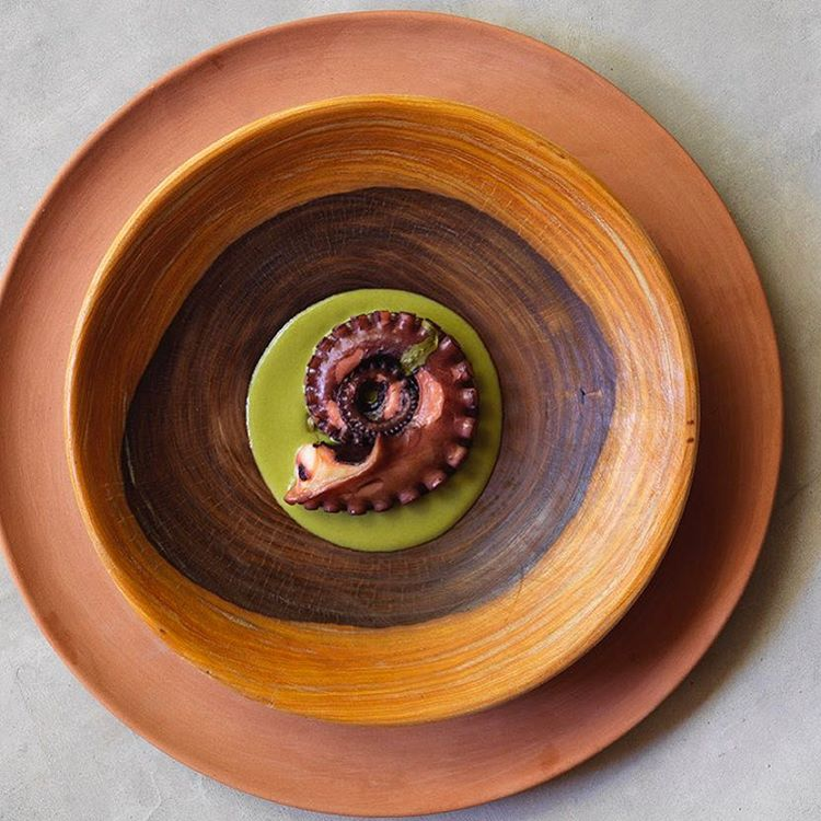 Noma Mexico's just cooked octopus with dzikilpak,