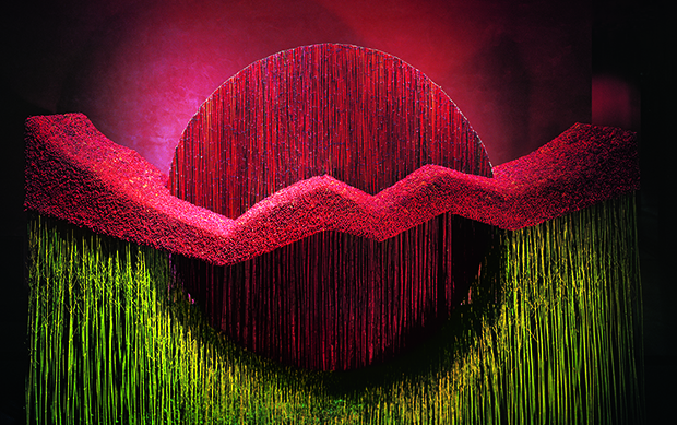 A rising sun, constructed from red and green cornus flowers, Daniel Ost's in the Tokyo Ginza Shiseido Building, 2005. From Daniel Ost