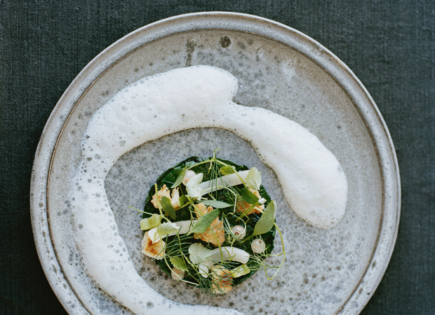 Spinach Steamed in Tea One of the innovative recipes from Noma: Time and Place in Nordic Cuisine