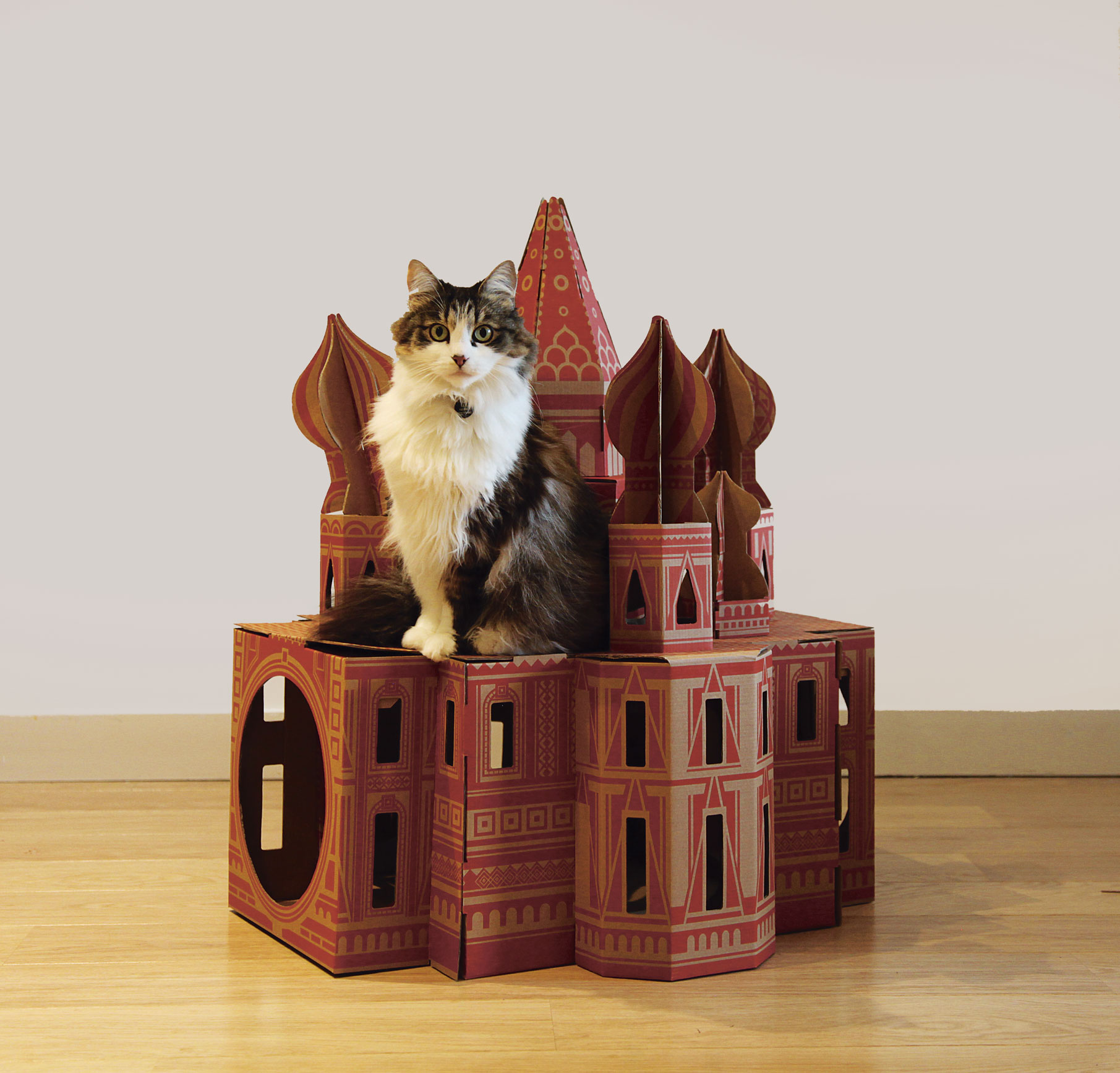 Lily poses on Landmarks by Poopy Cat from Pet-tecture