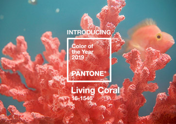 Pantone's 2019 Colour of the Year, Living Coral