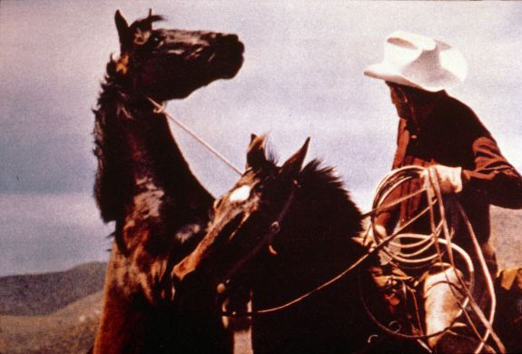 Untitled (cowboys) 1987 by Richard Prince