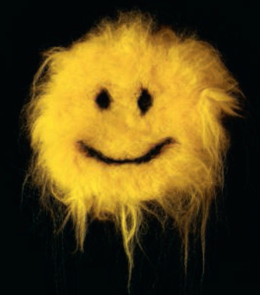 Fuzzy Smiley 2011 - Synthetic hair extensions and wood