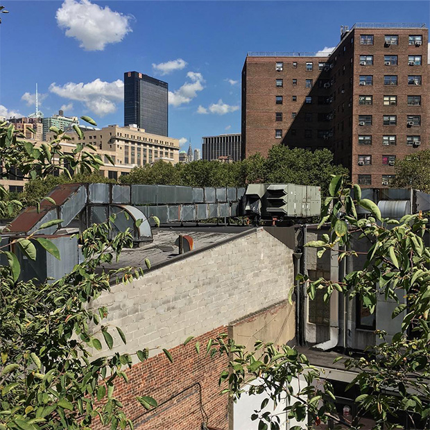 Stephen Shore shoots The High Line