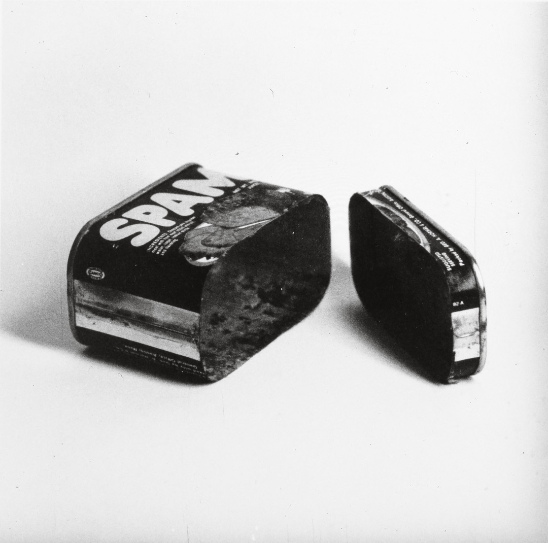 Ed Ruscha, Spam (Cut in Two), 1961. Courtesy the artist and Gagosian Gallery