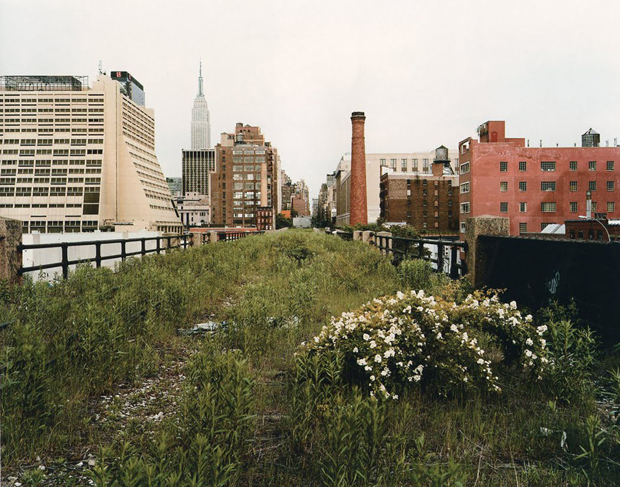 Joel Sternfeld, Looking East on 30th Street on a Morning in May (2000)