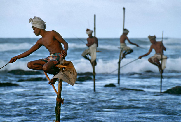 Steve McCurry - Stilt Fishermen, Sri Lanka 1995