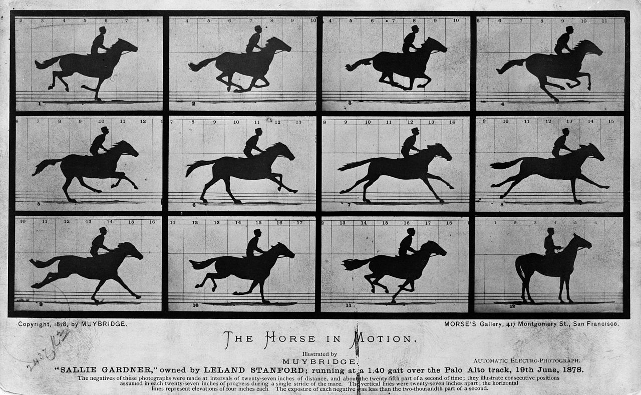 Was Eadweard Muybridge the first Silicon Valley pioneer?