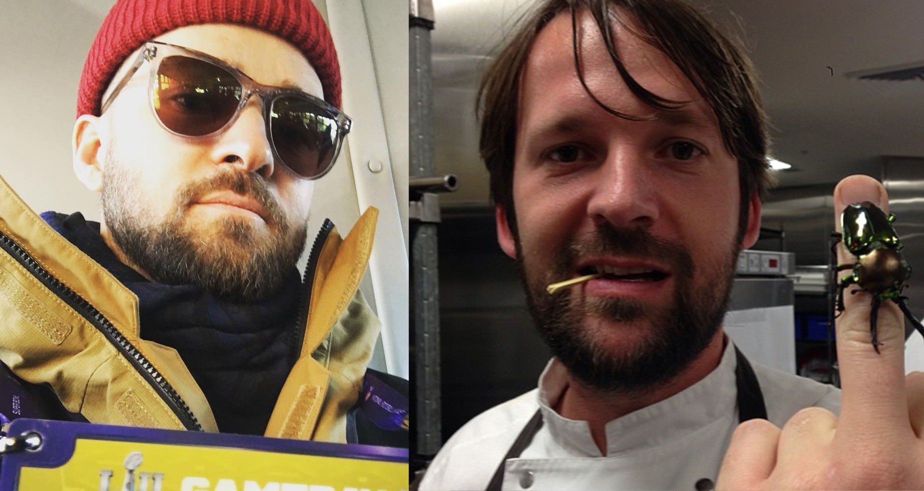 Justin Timberlake, René Redzepi and unidentified insect