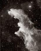 David Malin: IC 2118, the Witch's Head nebula, in Eridanus