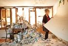 Rose Wylie - Why I Paint