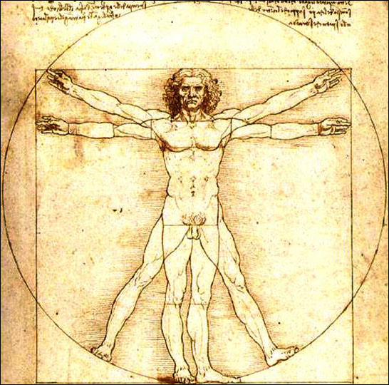 The Vitruvian Man (circa 1490) by Leonardo da Vinci