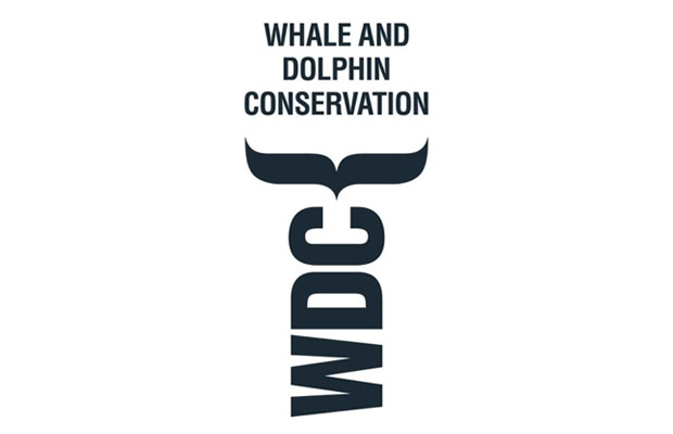 The new WDC logo, designed by Conran Design Group