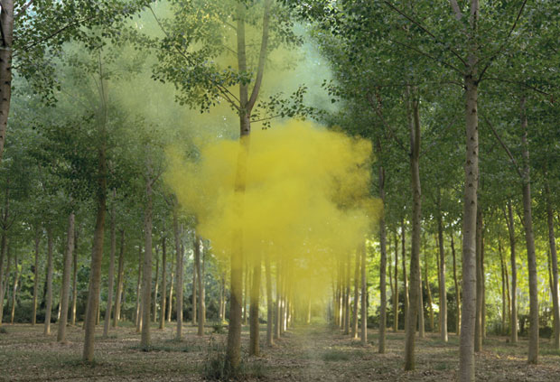 Silence/ Shapes_Ongoing - Filippo Minelli